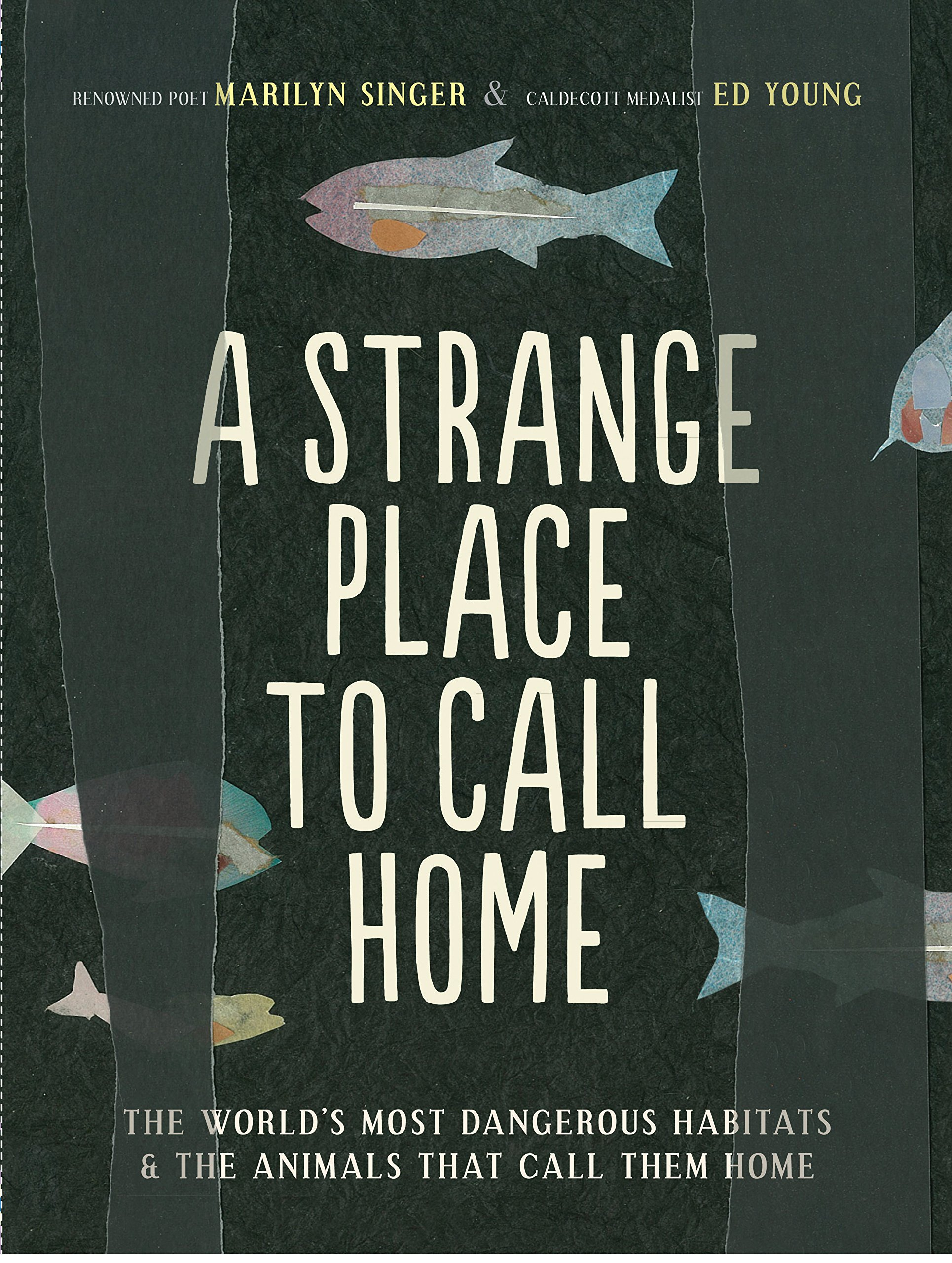 Download A Strange Place to Call Home: The World's Most Dangerous Habitats & the Animals That Call Them Home ebook