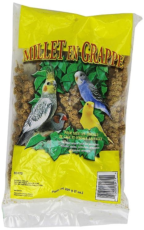 Amazon.com: Living world Spray de mijo, 7-ounce: Mascotas