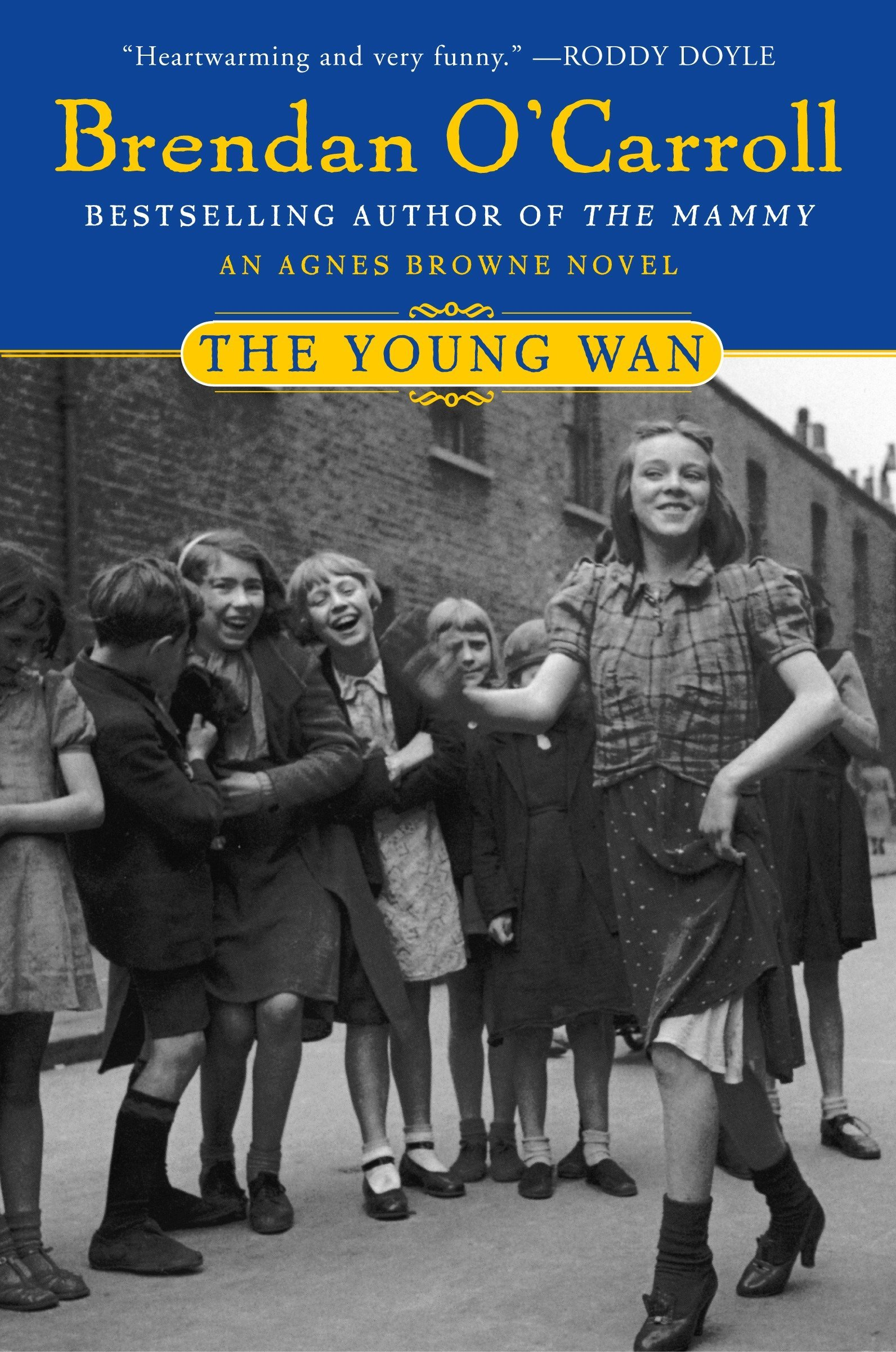 The Young Wan (Agnes Browne Series) pdf