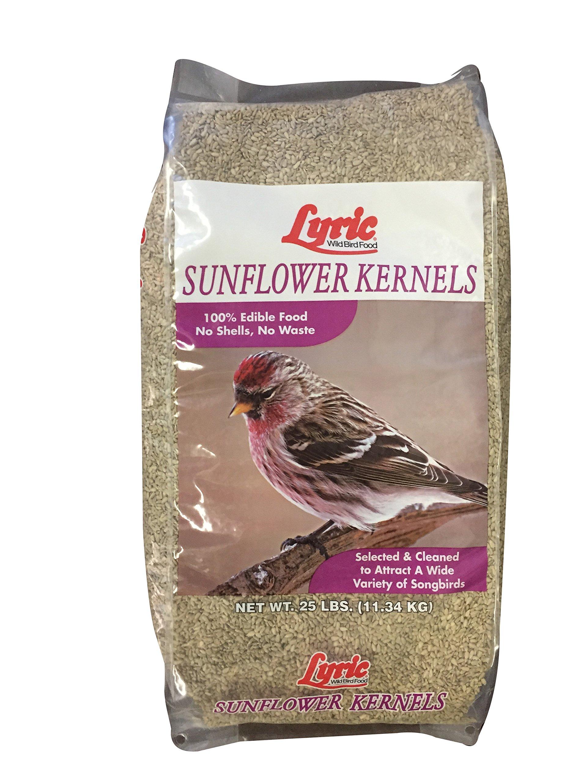 Lyric Sunflower Kernels - 25 lb. bag