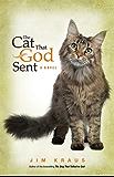 The  Cat That God Sent