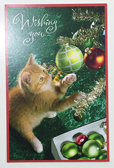 Amazon christmas card for someone special wishing youhas christmas card for someone special quotwishing youhas cat on m4hsunfo