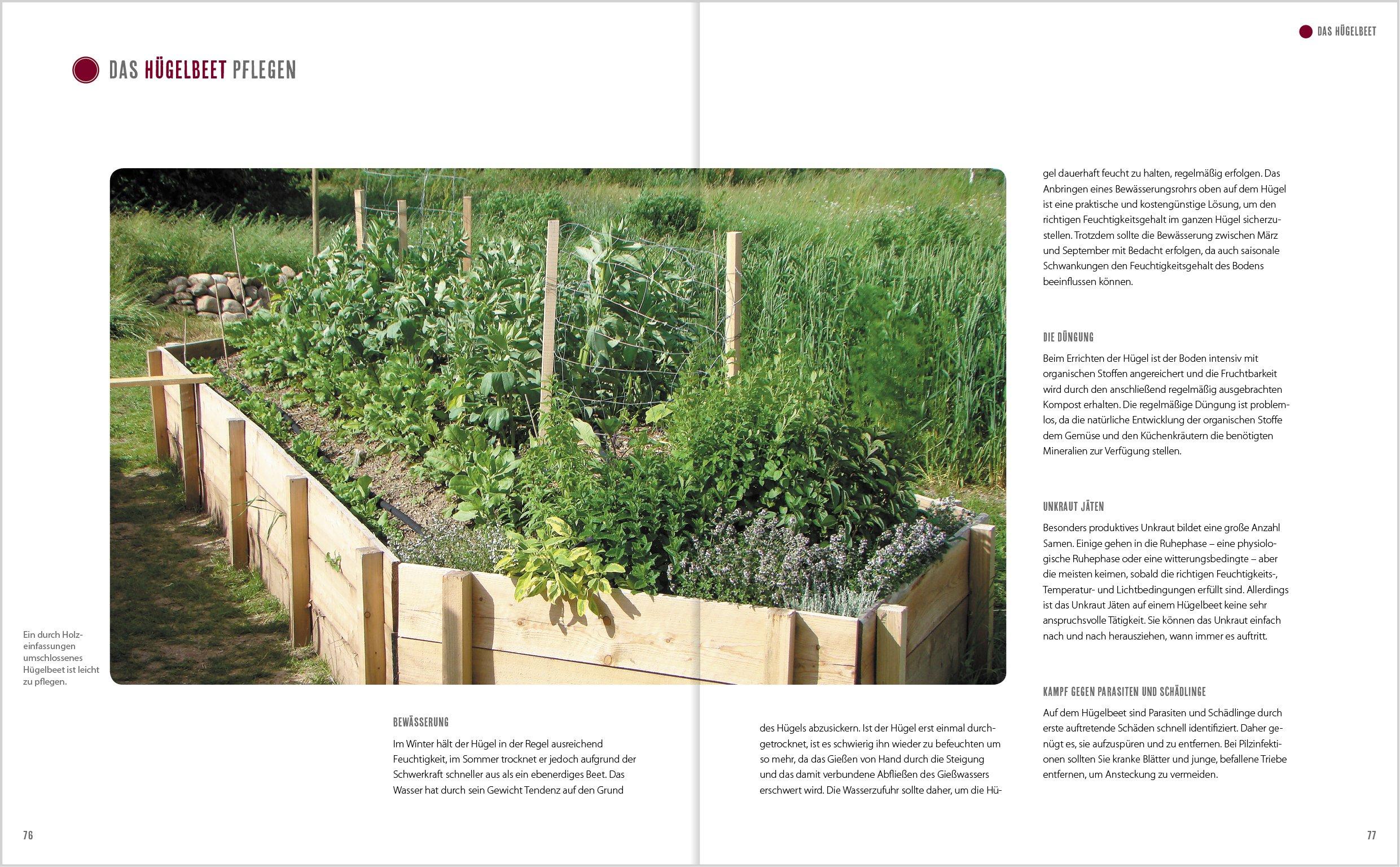 Die Neuen Gemüsegärten: Mulchbeete, Hügelbeete, Schichtbeete ... Pflege Von Pflanzen Probleme Grunde