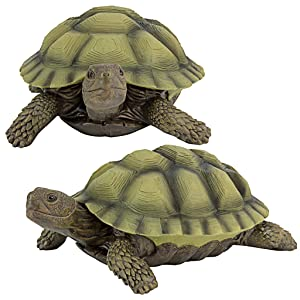 Design Toscano Gilbert, The Box Turtle Statue: Set of Two