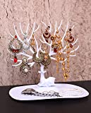 Kurtzy Jewellery Display Hanging Organizer Holder Tree Stand Tray for Earring Necklace Bracelet Rings Bangles Chains - White