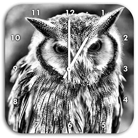 Monocrome Northern White Faced Owl Otus Leucotis Wall Clock