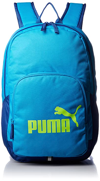 c27f6201c618 Puma Polyester 21 Ltrs Blue Danube Laptop Bag (7358914)  Amazon.in  Bags