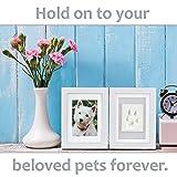 Better World Pets Paw Prints Keepsake Photo Frame