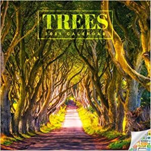 Trees Calendar 2021 Bundle - Deluxe 2021 Trees Wall Calendar with Over 100 Calendar Stickers (Trees Gifts, Office Supplies)