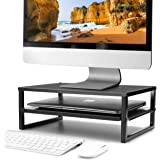 CAXXA 2-Tier Metal Laptop PC Monitor Stand Riser MAX 50 LBS Loading for Monitor, Printer, Keyboard,Black