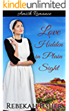 Love Hidden in Plain Sight: A Clean Amish Romance Story