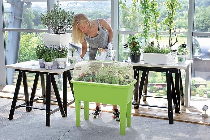 Stolmet XXL Grow House/Planter - Mesa de jardín con Sistema de ...
