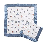 Aden by Aden + Anais Security Blanket 2 Pack, hit The Road