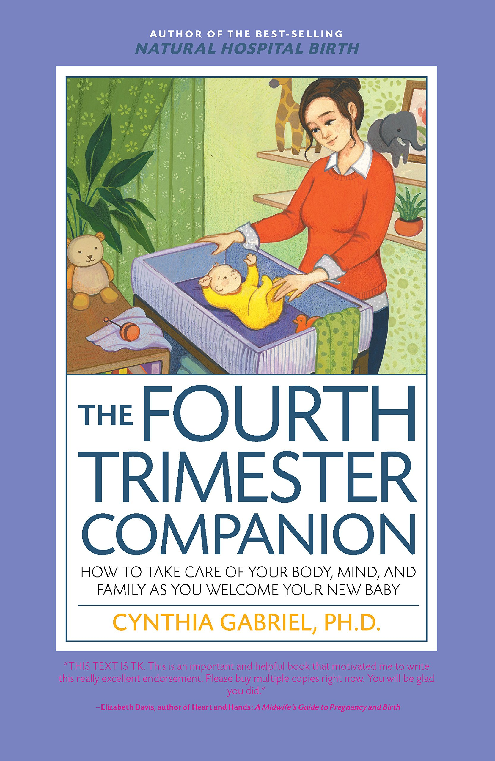 Image result for The Fourth Trimester Companion: How To Take Care of Your Body, Mind, and Family as You Welcome Your New Baby