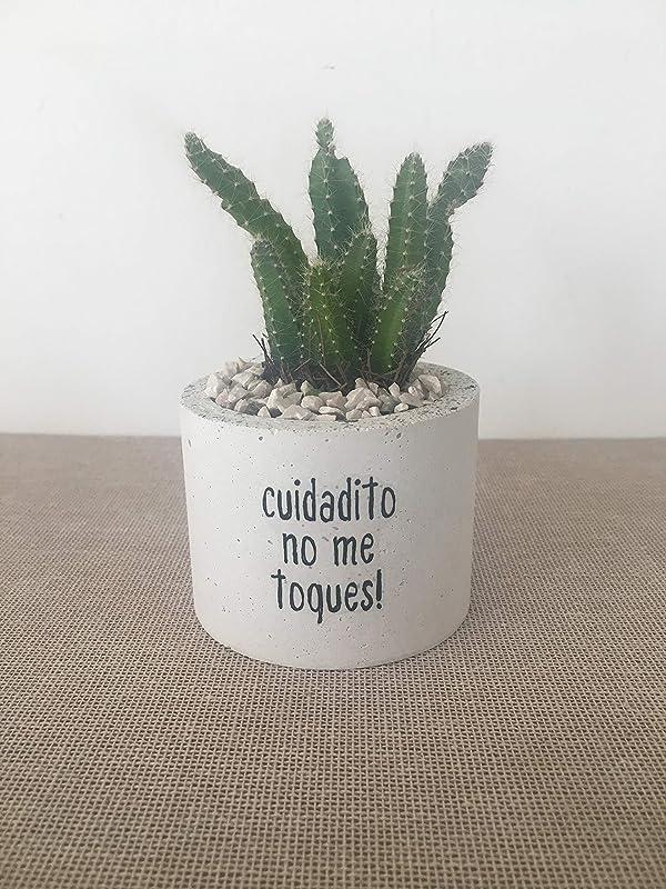 Macetas para cactushttps://amzn.to/2sfD73s