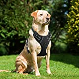 Lifepul(TM) Front Range No Pull Dog Vest Harness - Dog Body Padded Reflective Vest with Handle - Oxford Material Vest for Dogs Comfort Control for Small Medium Large Dogs in Training &Walking