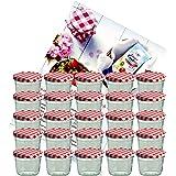 25er Set Sturzglas 230 ml Marmeladenglas Einmachglas Einweckglas To 82 rot karierter Deckel incl. Diamant-Zucker Gelierzauber Rezeptheft