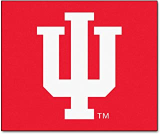 product image for FANMATS NCAA Indiana University Hoosiers Nylon Face Tailgater Rug
