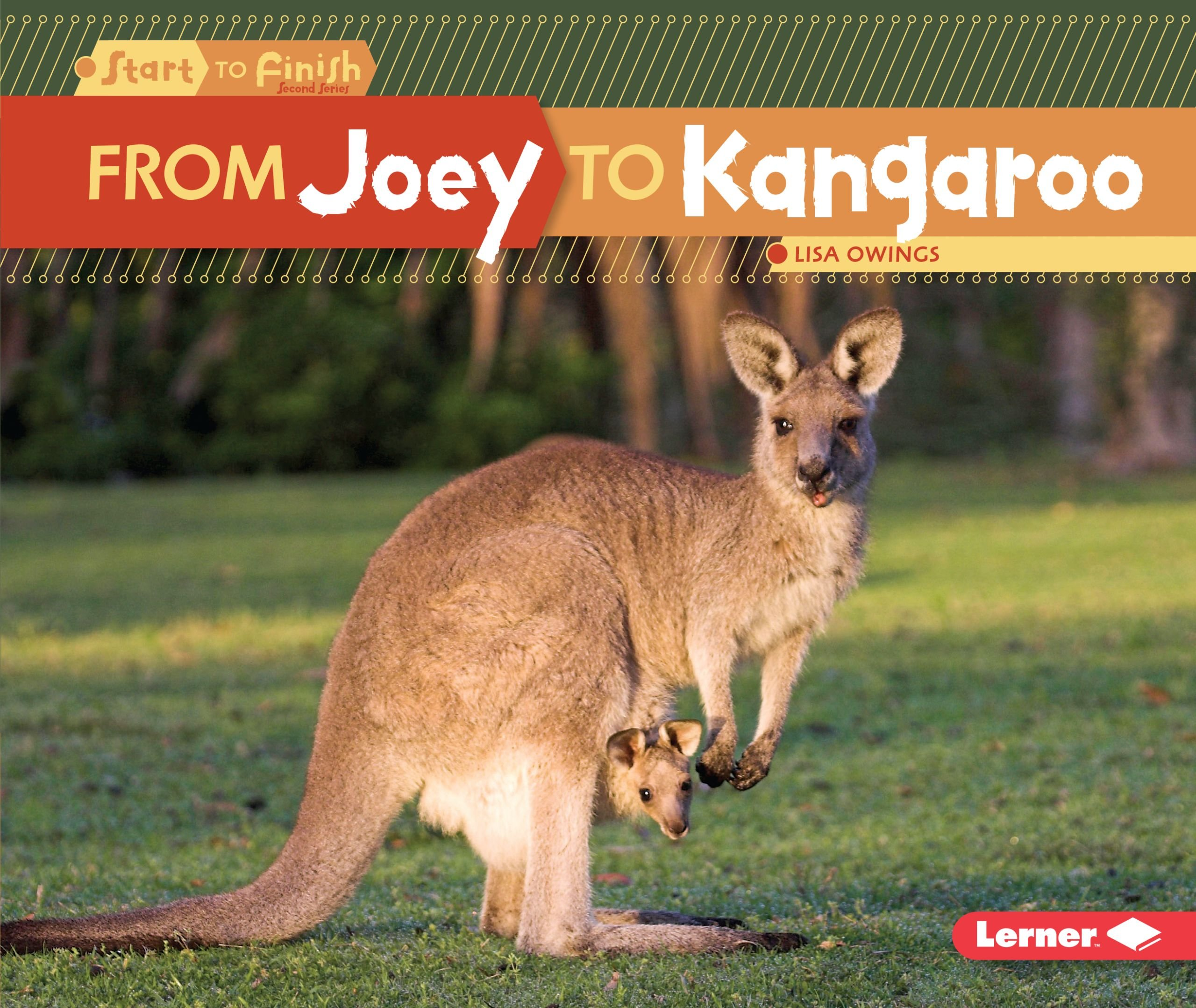 Download From Joey to Kangaroo (Start to Finish, Second Series) pdf