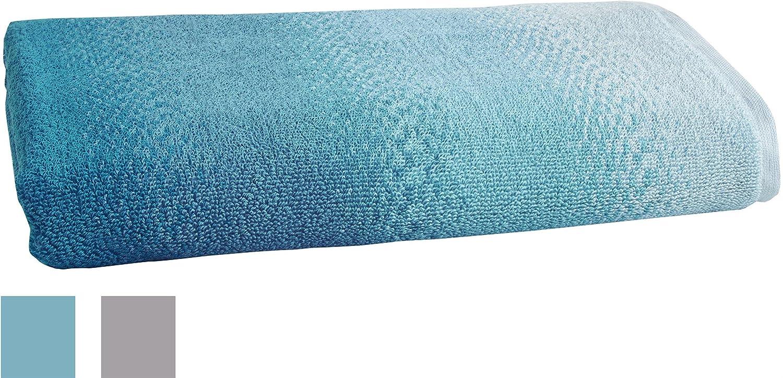 Amazon.com: LOFT by Loftex 3311 Allegra Ombre Bath Towel, Sterling ...
