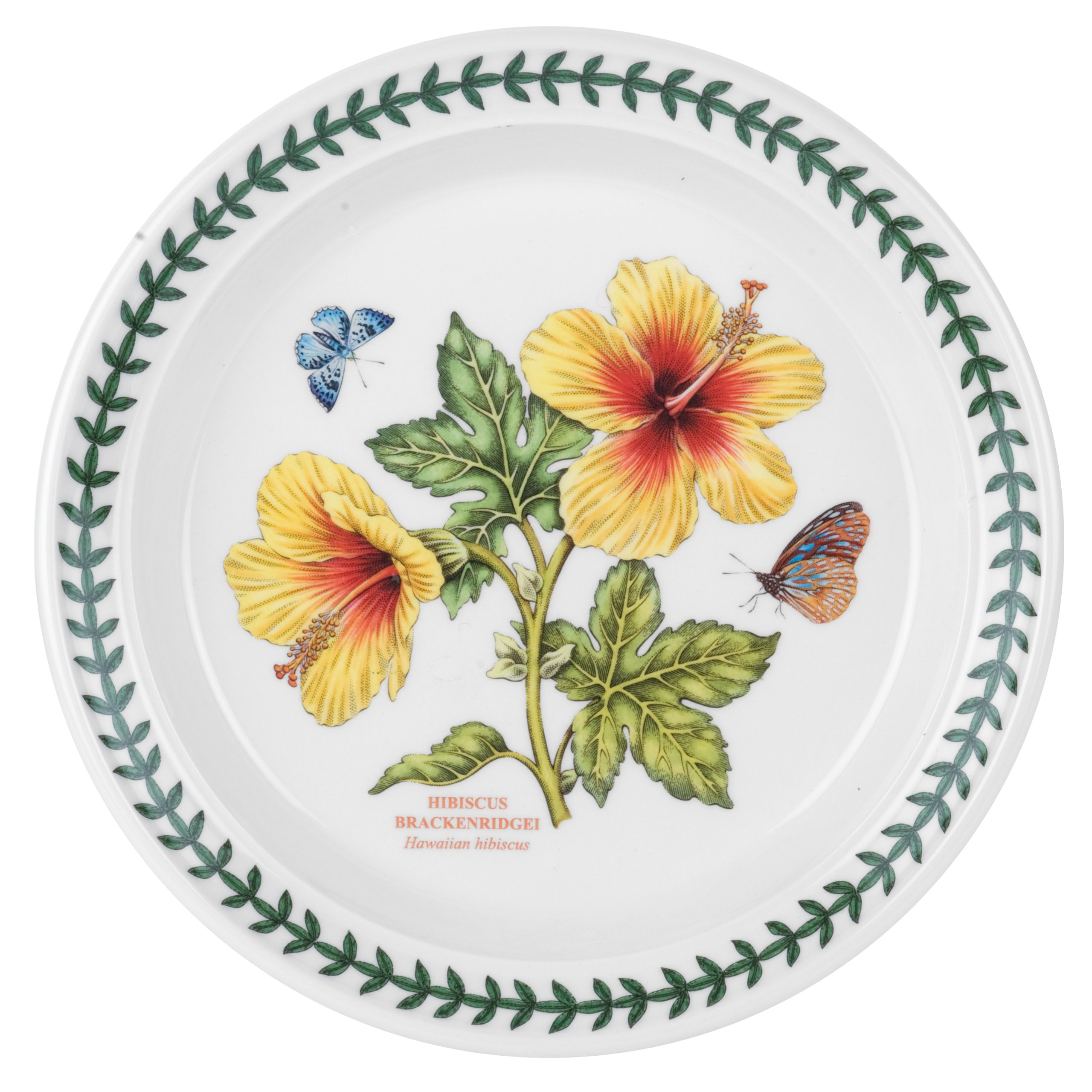 Portmeirion Exotic Botanic Garden Salad Plate with Hibiscus Motif, Set of 6