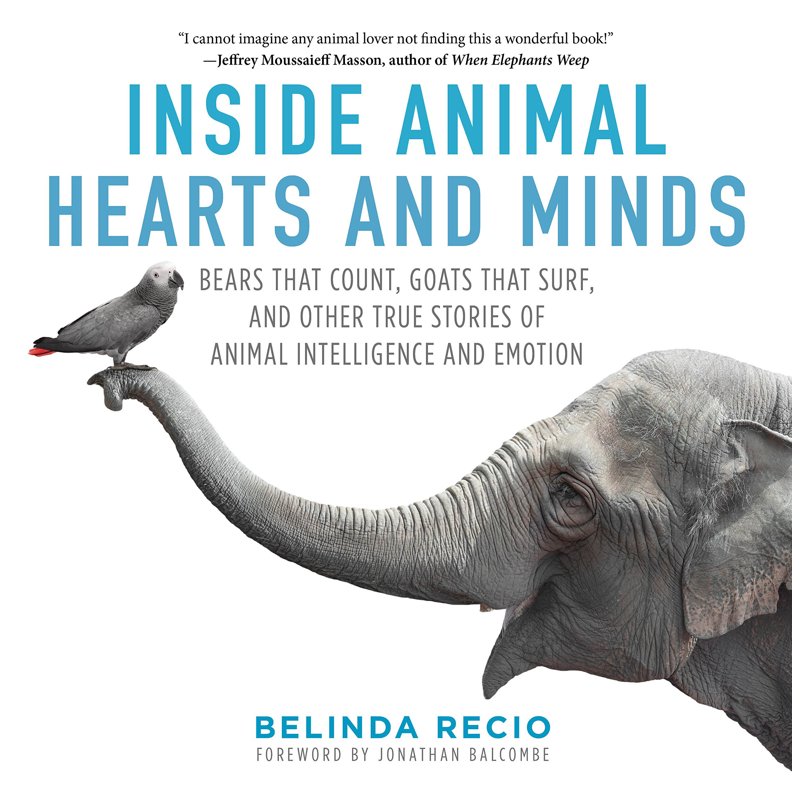 Inside Animal Hearts And Minds: Bears That Count, Goats That Surf, And  Other True Stories Of Animal Intelligence And Emotion: Belinda Recio,