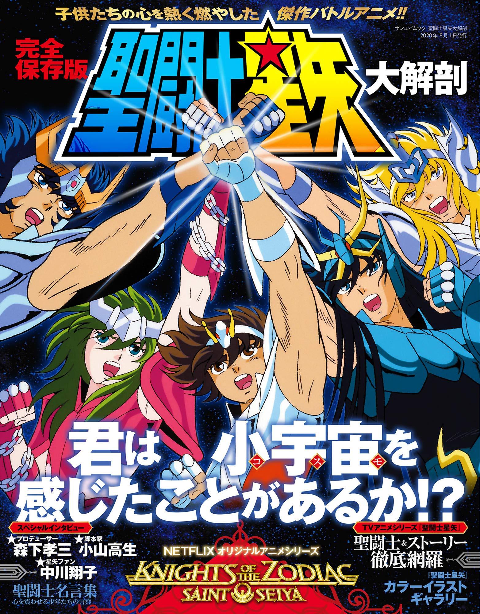 聖闘士星矢 大解剖 (日本の名作漫画アーカイブシリーズ サンエイムック ...