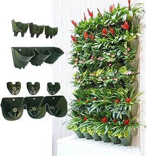 Amazoncom Indoor Wall Planter Kitchen Dining