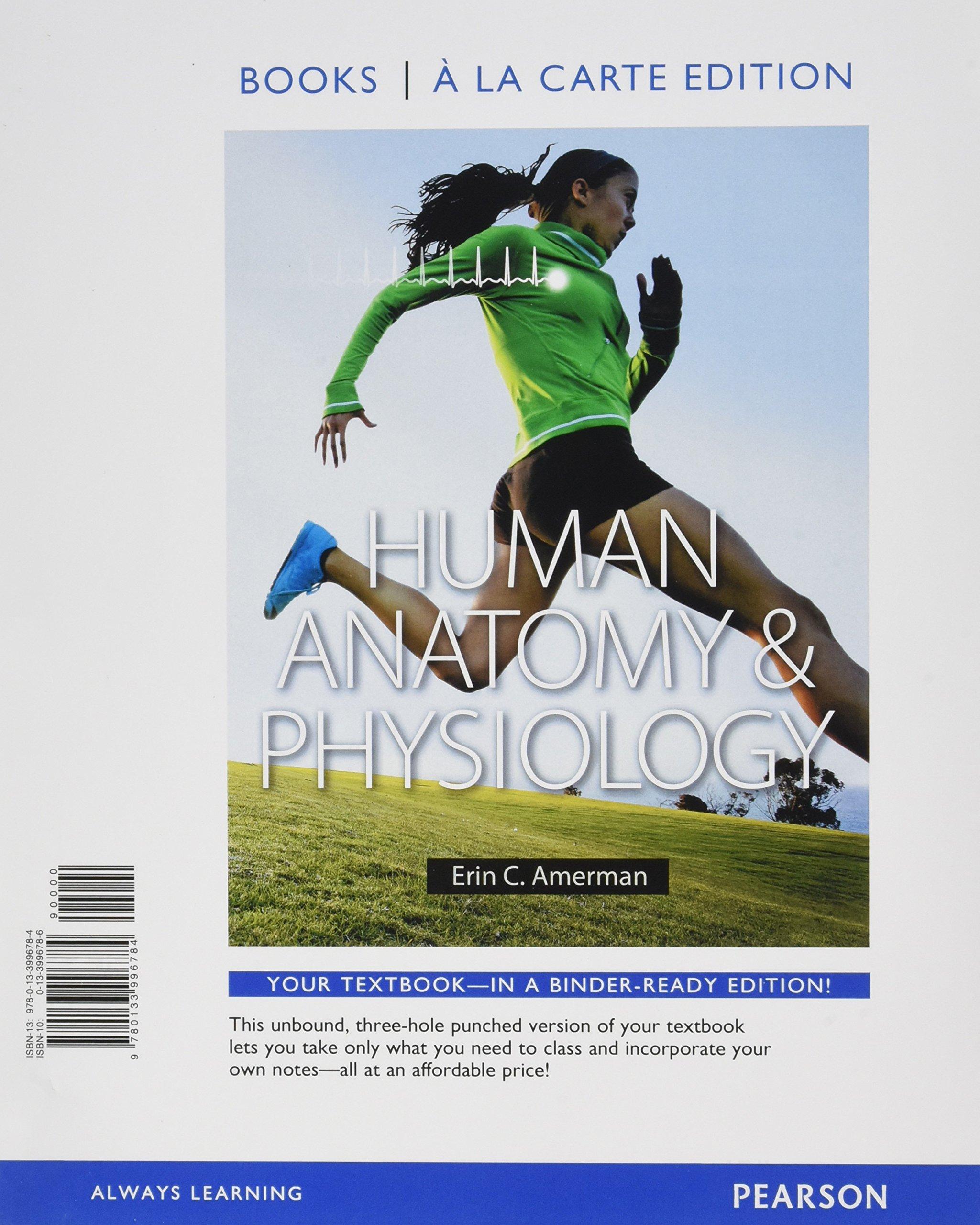 Human Anatomy & Physiology: Erin C. Amerman: Amazon.com.au: Books