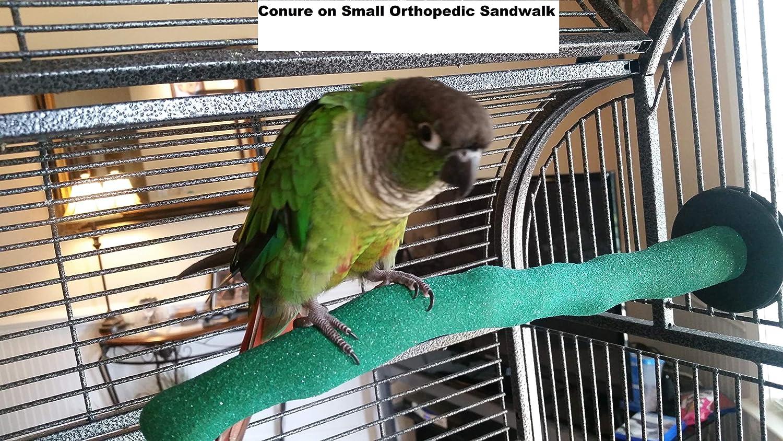 Small Pollys Sand Walk Orthopedic Bird Perch