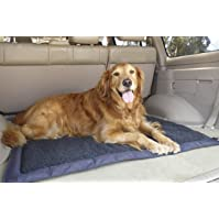 Lightspeed Outdoors Travel Dog Bed