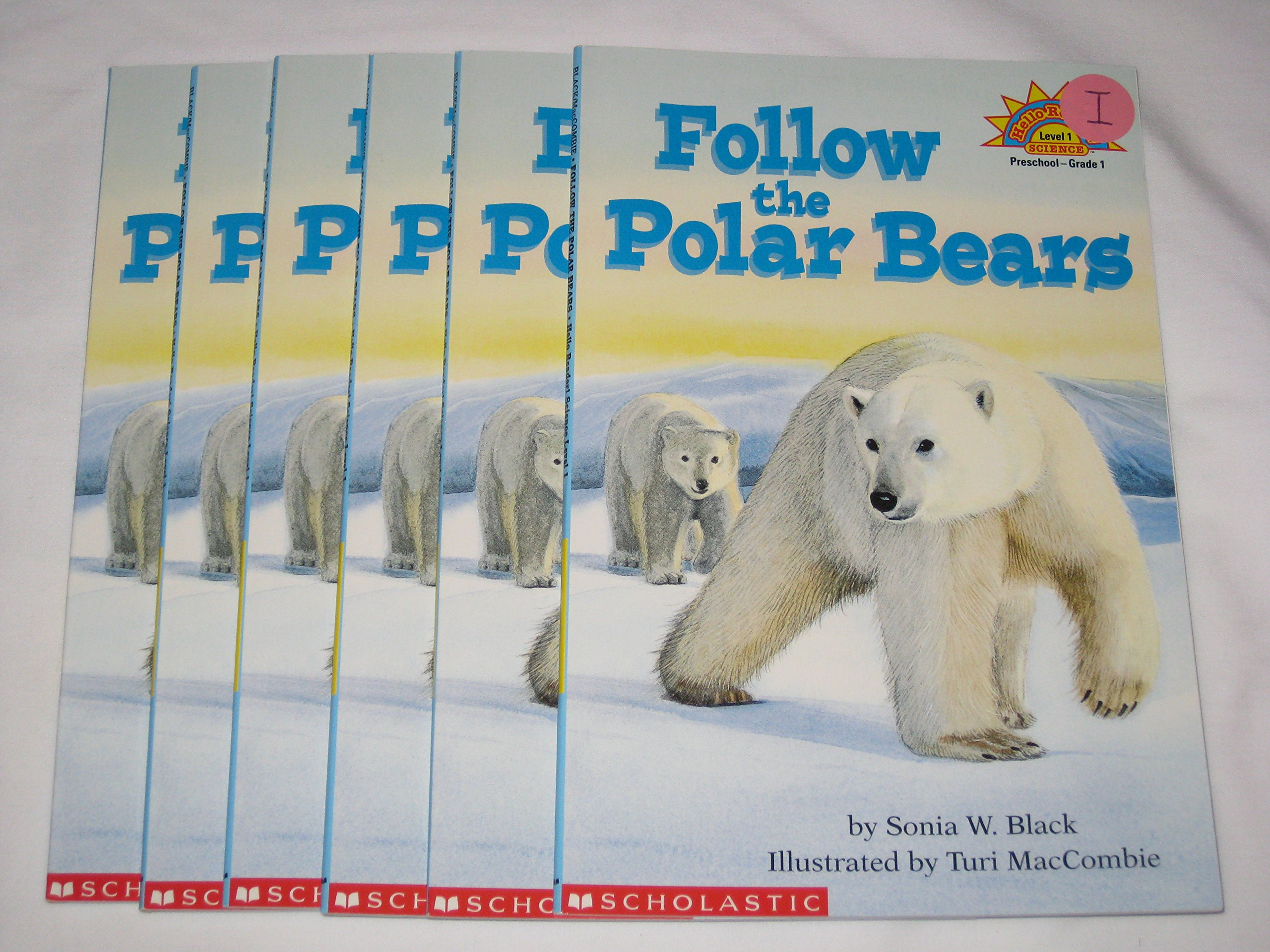 Read Online Guided Reading Set - Follow the Polar Bears by Sonia W. Black (6 books) ebook