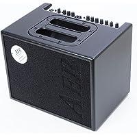 Aer cmp6o3Professionelle Verstärker für Gitarre akustisch