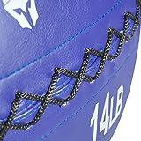 Titan 14 lb Wall Medicine Ball Core Workout