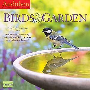 Audubon Birds In Garden Wall Calendar 2018 [12'' x 12'' Inches]