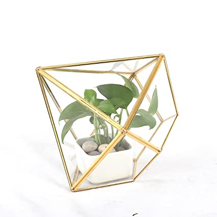 Amazon Com Ncyp Geometric Glass Terrarium Wedding Card Box Copper