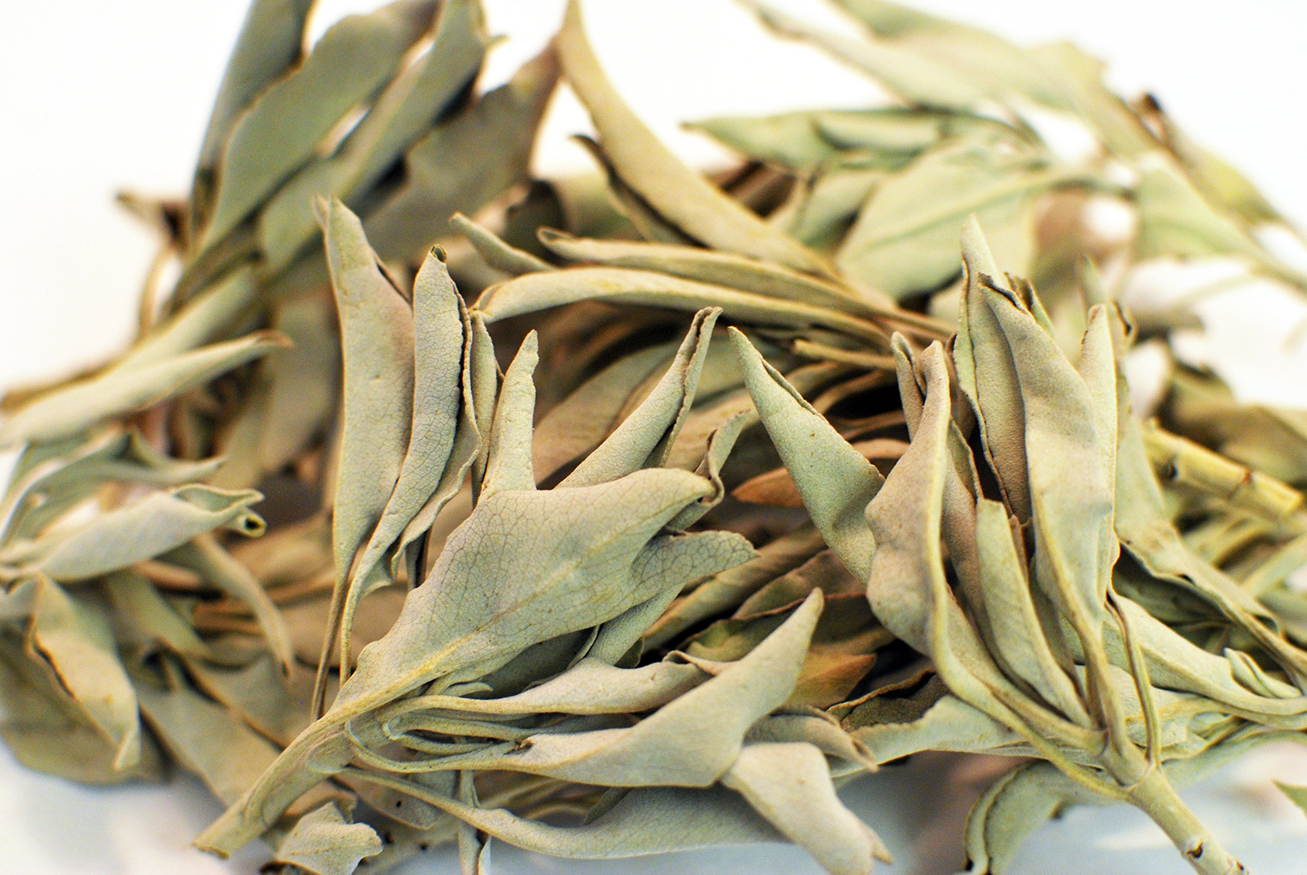 EarthWise White Sage Leaves - Organic - 1 Pound - by Aromatics by EarthWise
