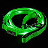 Blazin' Safety LED Dog Leash - USB Rechargeable Flashing Light, 4Ft & 6 Ft, Water Resistant - Avoid Danger
