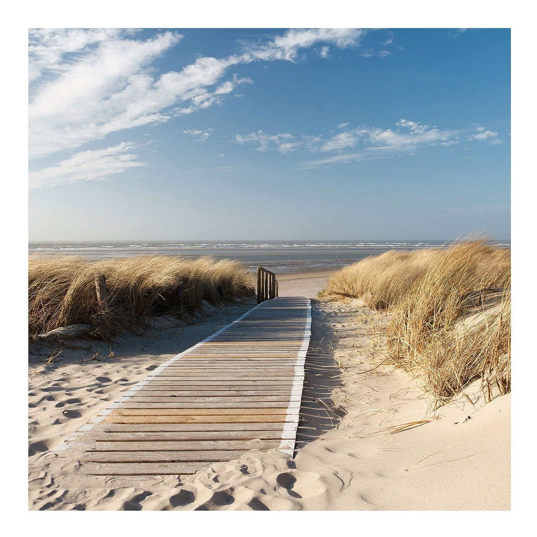Bilderwelten Vliestapete - Ostsee Strand - Fototapete Quadrat Vlies Tapete Wandtapete Wandbild Foto 3D Fototapete, Größe HxB  240cm x 240cm