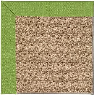 product image for Capel Rugs Zoe-Raffia Rectangle Machine Tufted Area Rug, 2 x 3', Grass