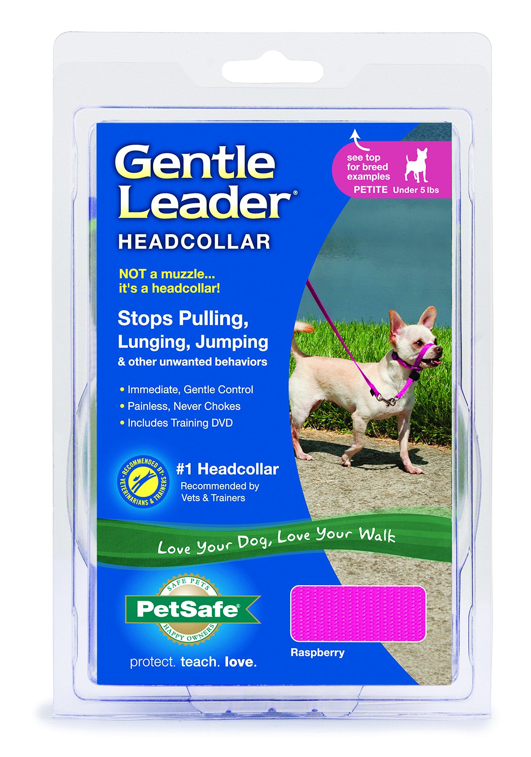 Gentle Leader Quick Release Headcollar: Petite, Raspberry Pink
