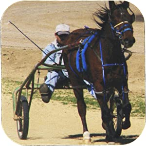3dRose CST_6434_2 Harness Racing Soft Coasters, Set of 8