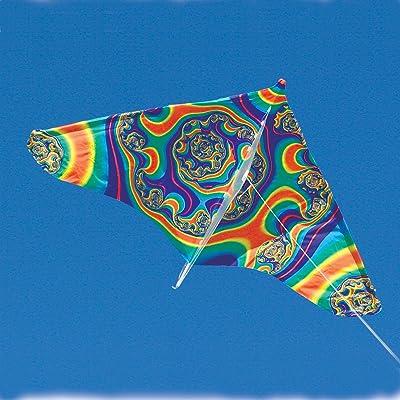Swirl Gayla Trendsetter Delta Kite: Toys & Games