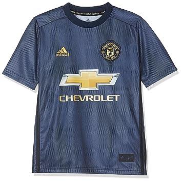 pretty nice 056e1 cbfc0 Amazon.com : adidas 2018-2019 Man Utd Third Football Shirt ...