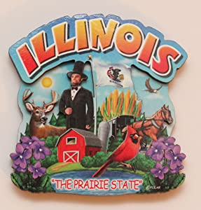 Illinois State Montage Wood Fridge Magnet 2
