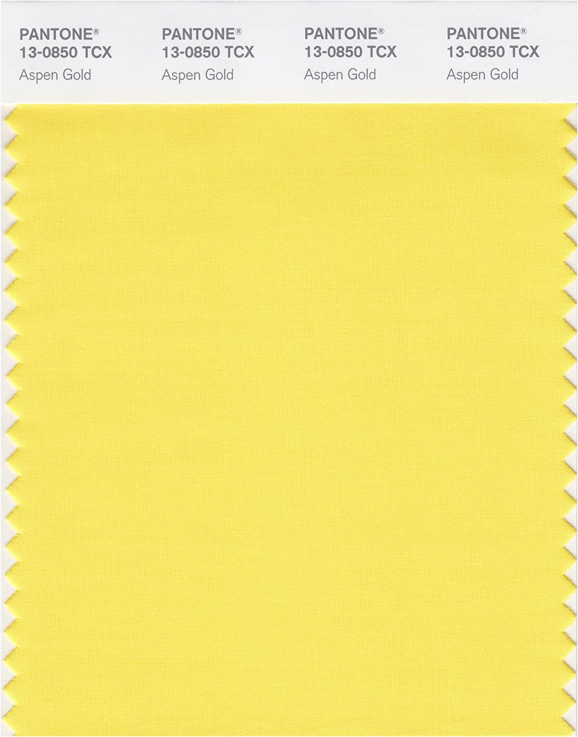 PANTONE Smart 13-0850X Color Swatch Card, Aspen Gold