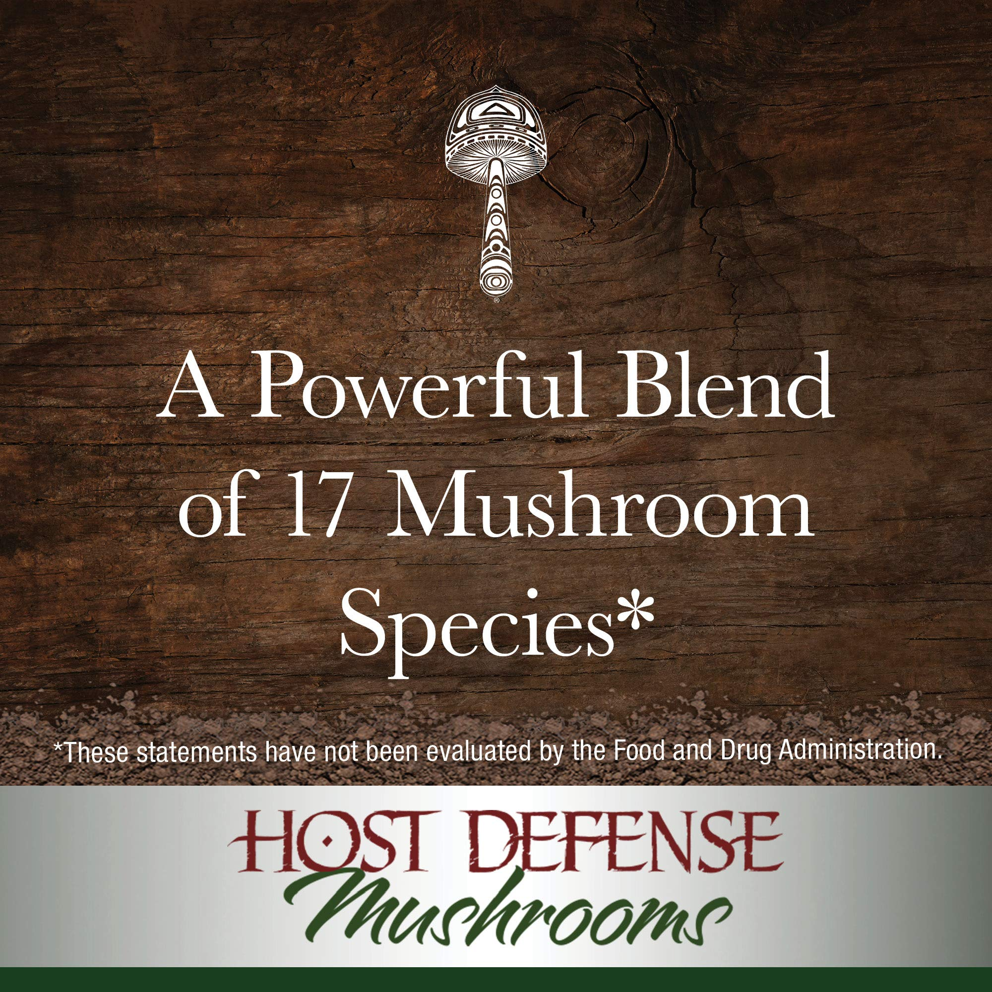Host Defense - MyCommunity Multi Mushroom Extract, Comprehensive Support for a Robust and Resilient Immune System with Lion's Mane and Turkey Tails, Non-GMO, Vegan, Organic, 120 Servings (4 Ounces) by Host Defense (Image #5)