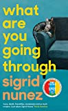 What Are You Going Through: 'A total joy - and laugh-out-loud funny' DEBORAH MOGGACH