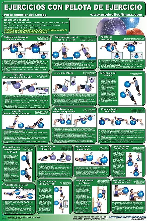 Amazon.com : Ejercicios con pelota de ejercicio - Centro- y & Ejercicios con pelota de ejercicio - Parte superior del cuerpo - Body Ball Poster/Chart Set ...