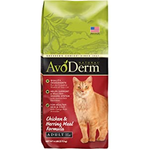 AvoDerm Natural Chicken & Herring, Healthy Skin & Coat, Dry Cat Food